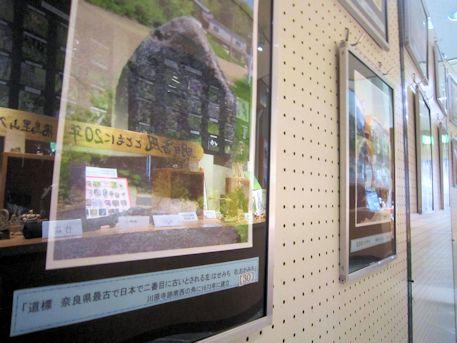 川原寺跡の道標