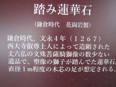 踏み蓮華石の解説