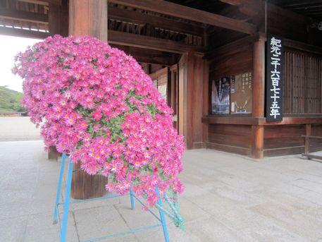 橿原神宮南神門の菊花
