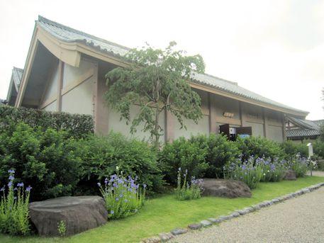 元興寺の桔梗