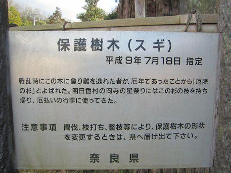 奈良県保護樹木