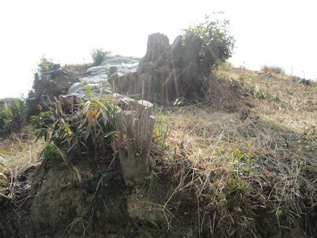 平野塚穴山古墳の墳丘
