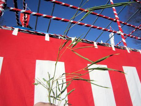 湯立神楽の笹の葉