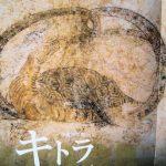 キトラ古墳壁画玄武