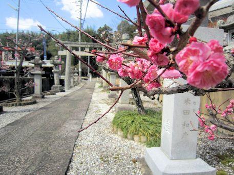 高皇産霊神社