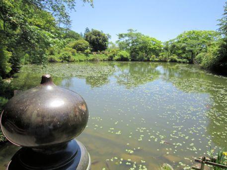 鳥見山公園の勾玉池