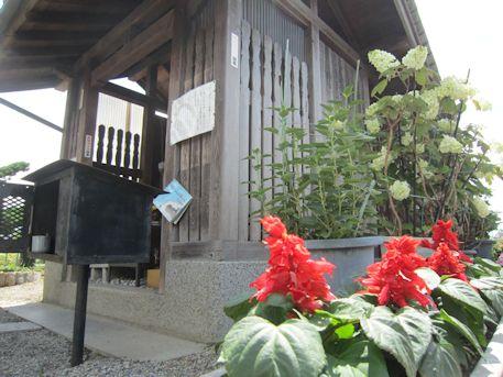 地蔵堂の花