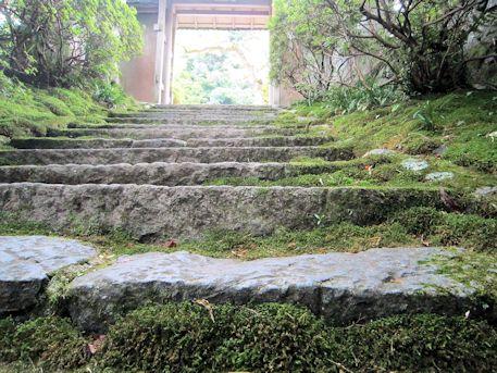 大願寺の石段