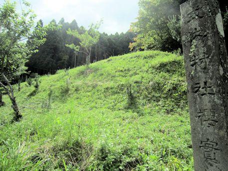 桜実神社の社号標