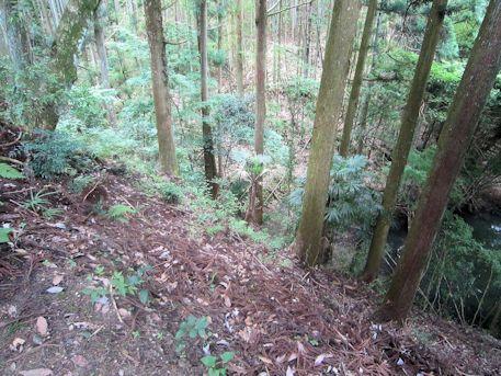 八ツ房杉周囲の崖