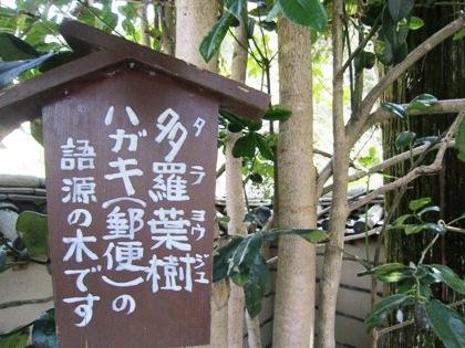 多羅葉樹の立札