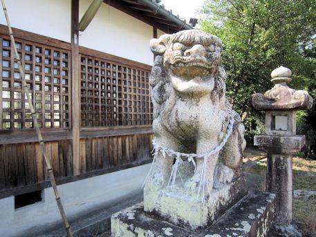 鳥坂神社の狛犬