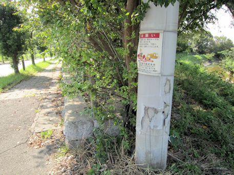 益田池堤跡と高取川