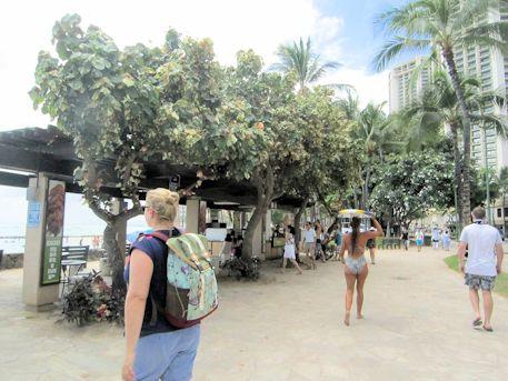ワイキキビーチ前の観光客