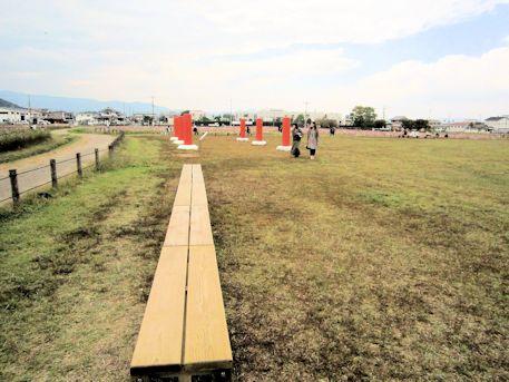コスモス畑とベンチ