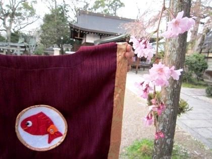 貫頭衣と桜