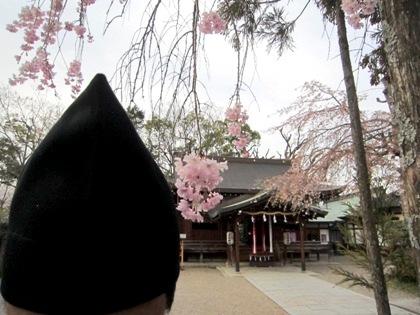 恵比須神社宮司の頭巾