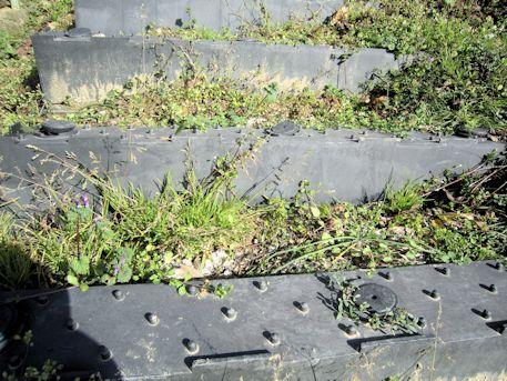 保久良古墳の階段