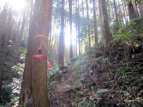 花山塚古墳のアクセスルート