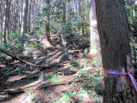 花山西塚古墳のアクセスポイント