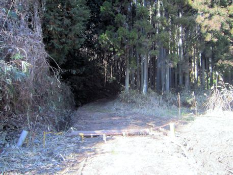 花山塚古墳の山道