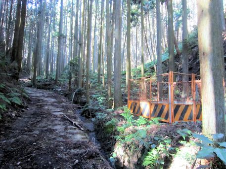 花山塚古墳の道