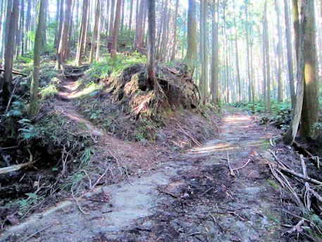 花山塚古墳のアクセスポイント
