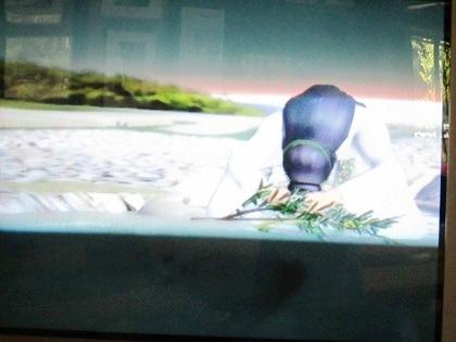 亀形石造物のCG映像