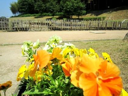 明日香村の亀形石造物