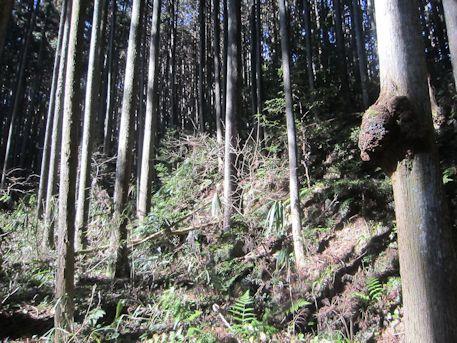 花山塚古墳の間違いルート
