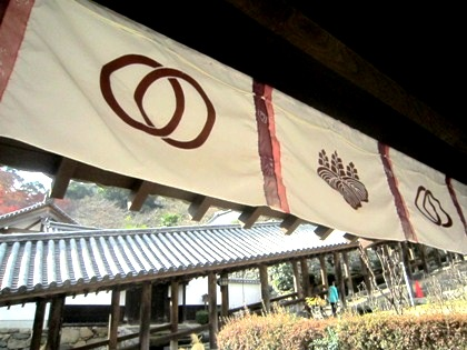 長谷寺の輪違い紋