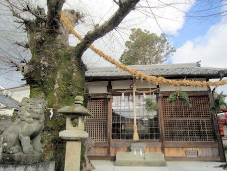 素戔嗚神社の狛犬