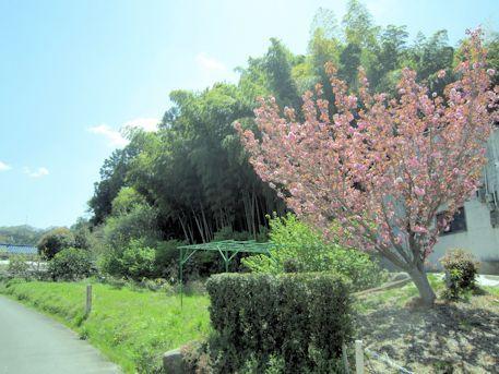 八幡神社のアクセス道