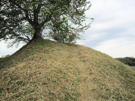 岩屋山古墳の墳頂