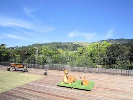 屋上庭園の風景