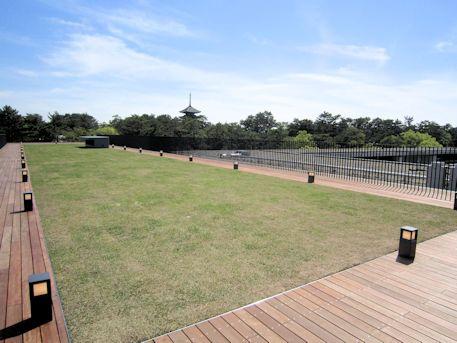 屋上庭園と興福寺五重塔