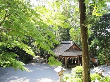 新緑の大神神社