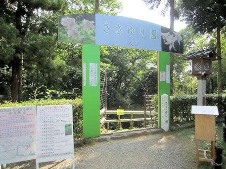 大神神社のささゆり園
