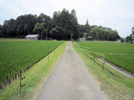 多田来迎寺参道