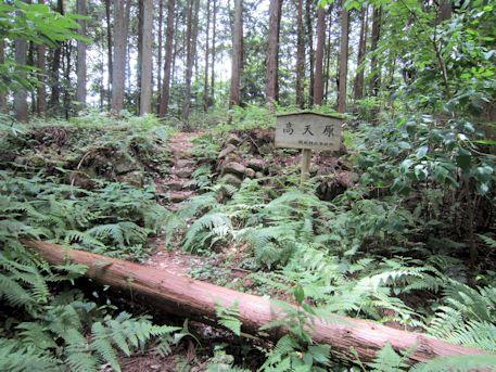 阿紀神社の高天原