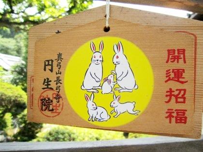 長弓寺円生院の干支絵馬