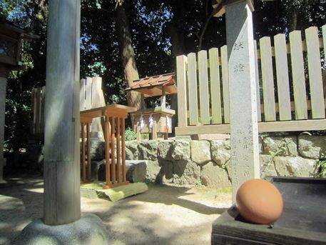 琴平社の卵