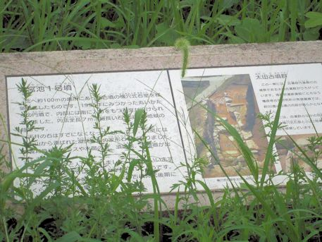 太田古墳群の解説パネル
