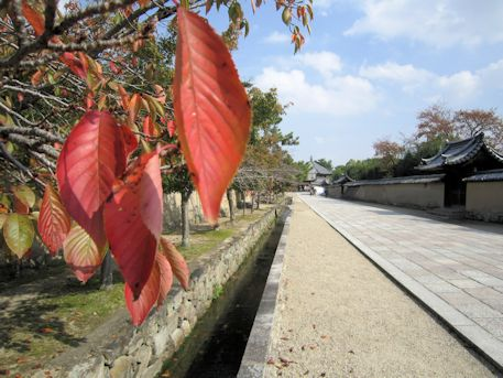 法隆寺東大門から東院伽藍への道