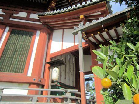 興福寺南円堂の橘