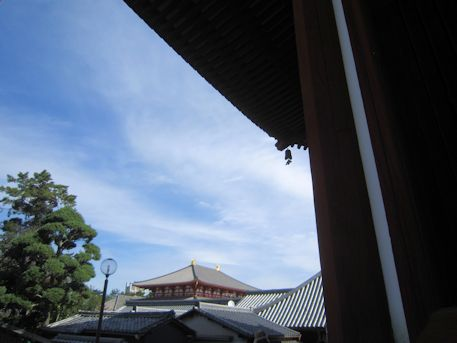興福寺中金堂の屋根