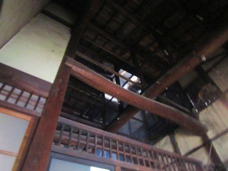 奈良町セミナーハウスの天井
