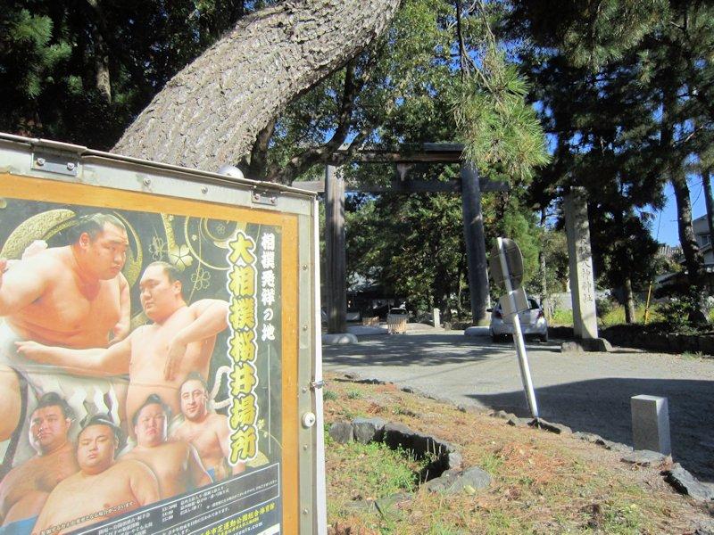 大相撲桜井場所ポスター